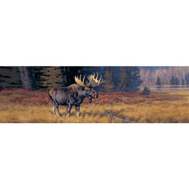 October Moose Wild Wings Window Graphics from Vantage Point Concepts
