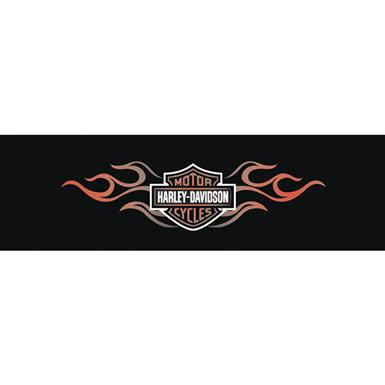 Vantage Point® Double Flame Harley Davidson Window Graphics