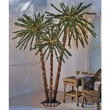 Lit Palm Tree Cluster
