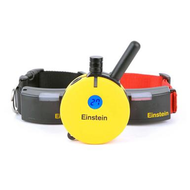 Einstein ET-502A Remote E-Collar Dog Trainer for Small-to-Medium Sized Dogs, 2-Dog System