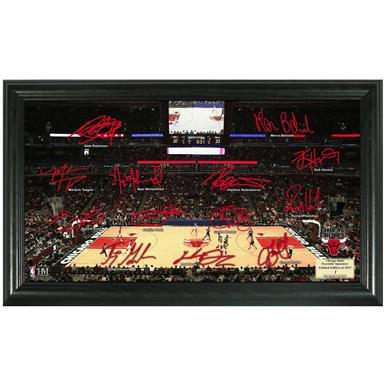 Chicago Bulls Signature Court from The Highland Mint