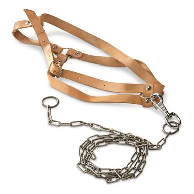 Czech Military Surplus Dog Chain and Harness, New