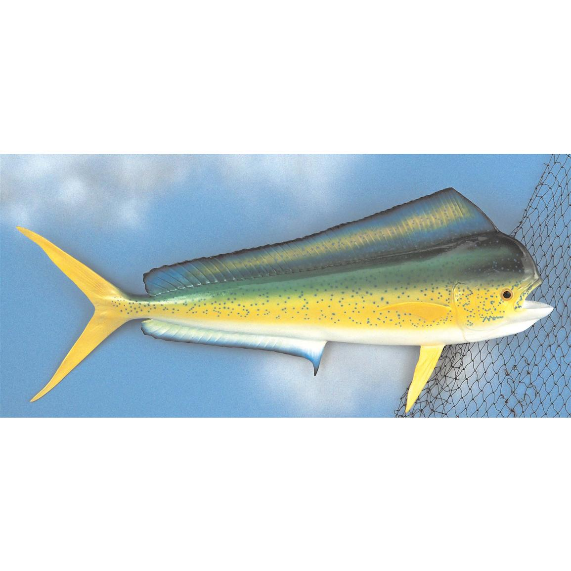 "Land & Sea 41"" Mahi Mahi Fiberglass Fish Wall Plaque"
