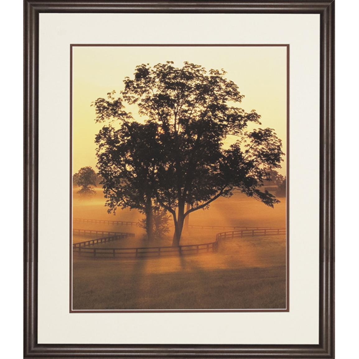 """Morning Splendor"" By Adam Jones Open Edition Photograph"