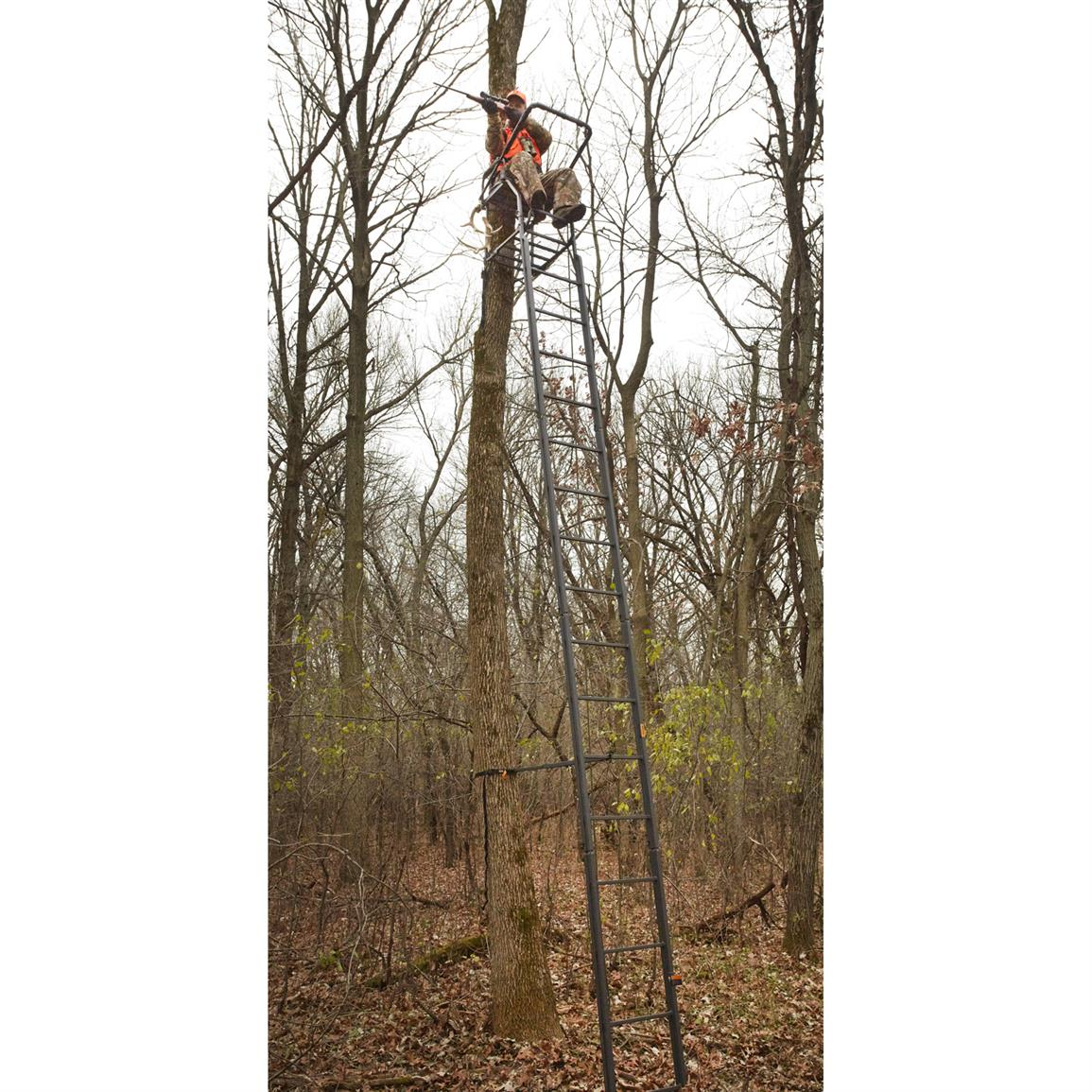 Sturdy double-rail ladder for strength and durability