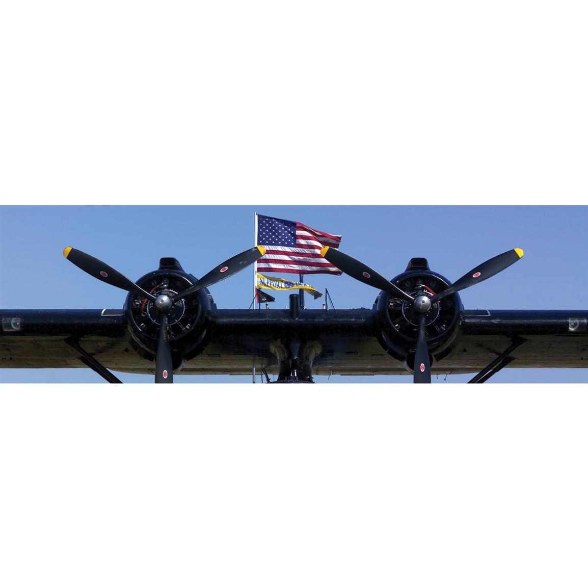 Vantage Point Concepts® PBY-6A Catalina Wings National Geographic Window Graphics
