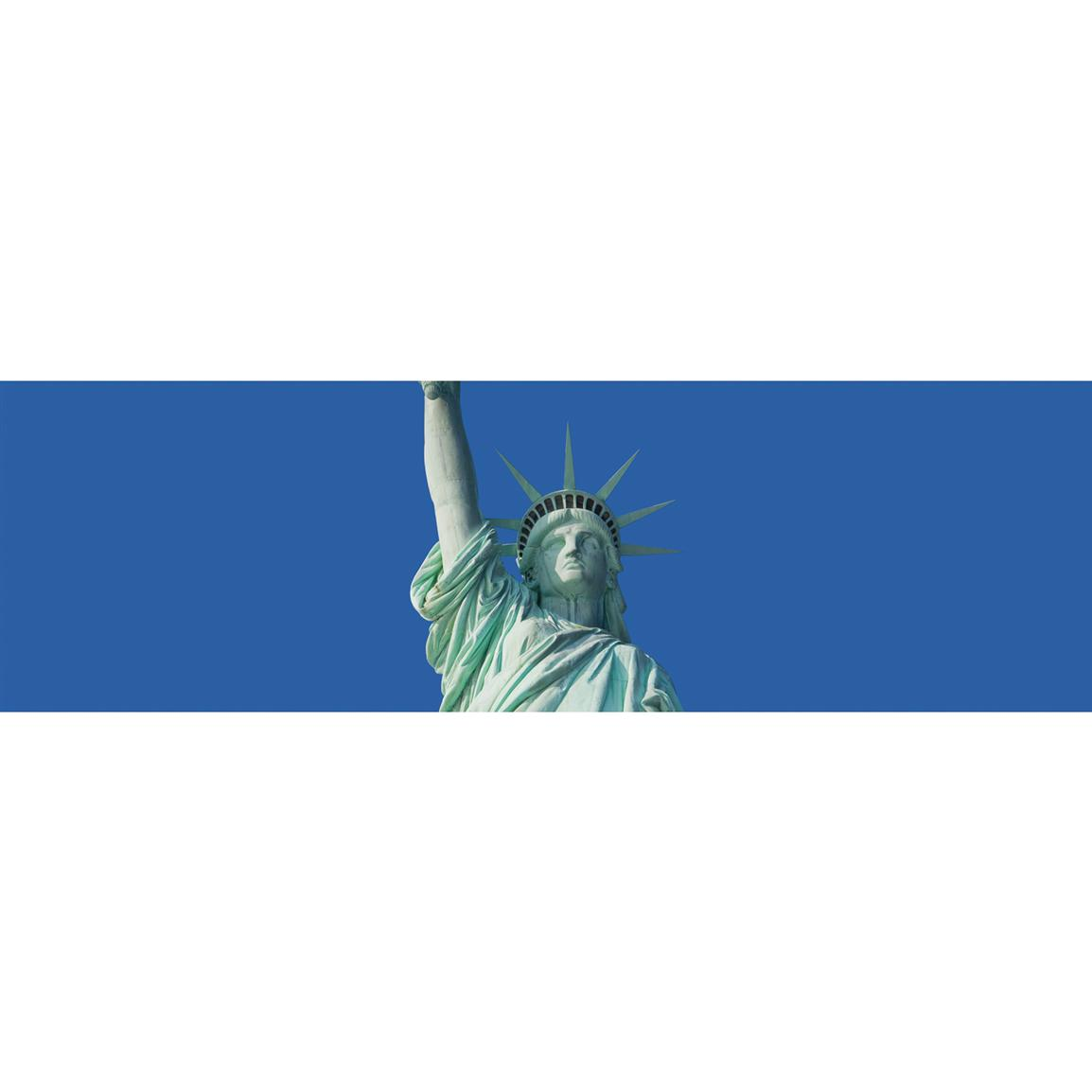 Vantage Point Concepts® Statue of Liberty National Geographic Window Graphics