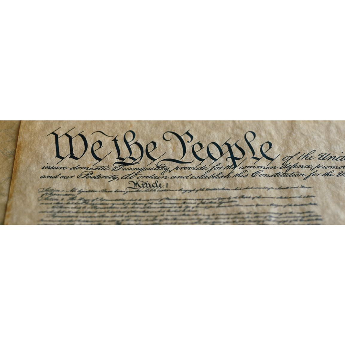 Vantage Point Concepts® U.S. Constitution National Geographic Window Graphics