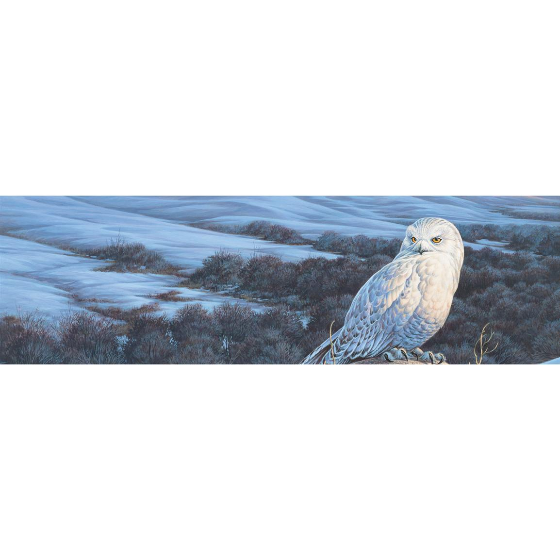 Snowy Owl Winter Wild Wings Window Graphics from Vantage Point Concepts