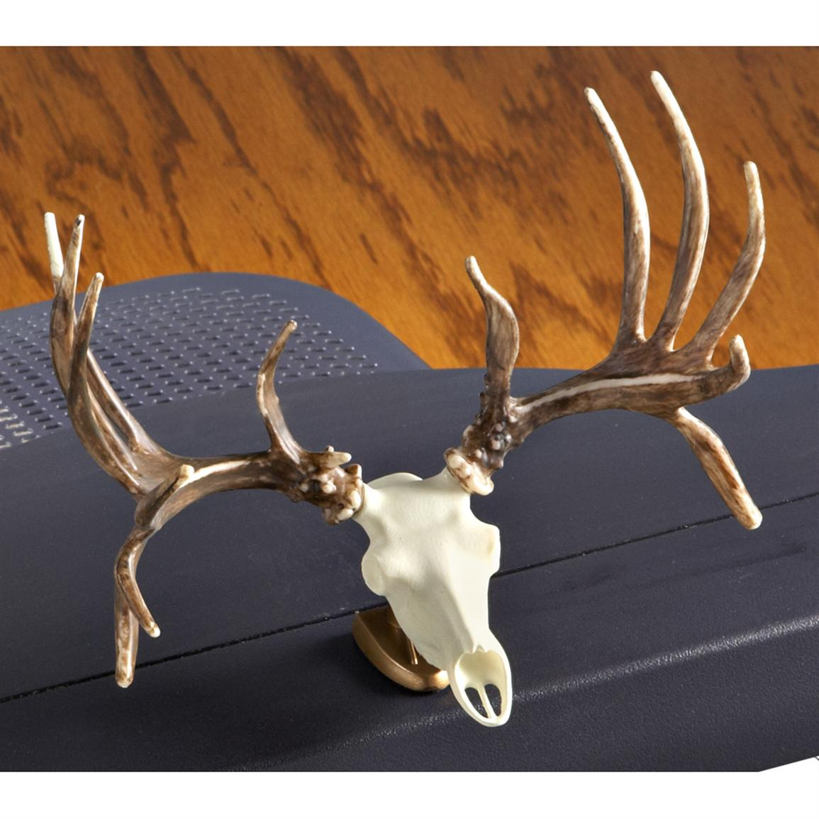 Raxx Dashboard Deer Skull, Whitetail