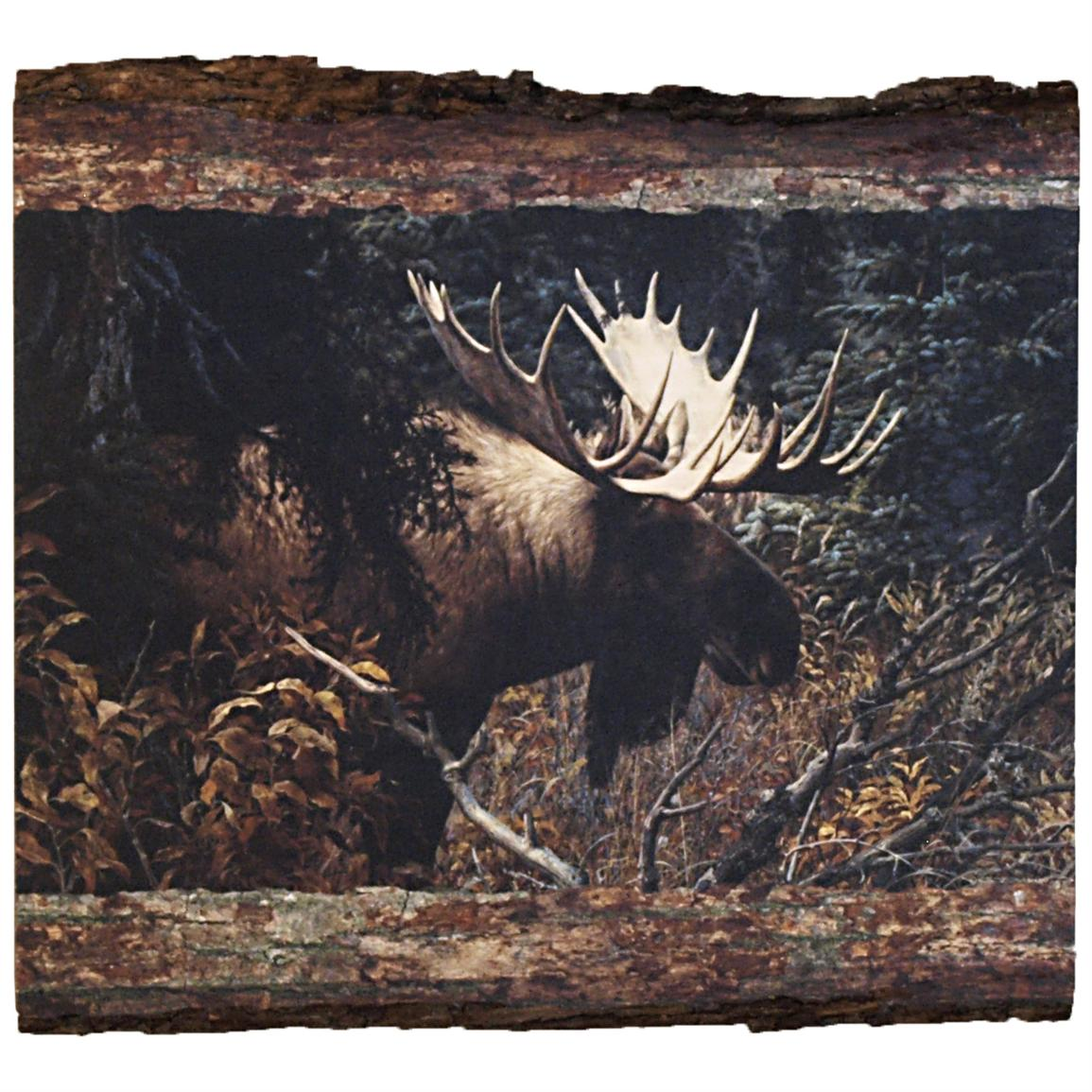"Walnut Hollow® ""Calm Before the Challenge"" Wall Art by Carl Brenders, Rectangle"