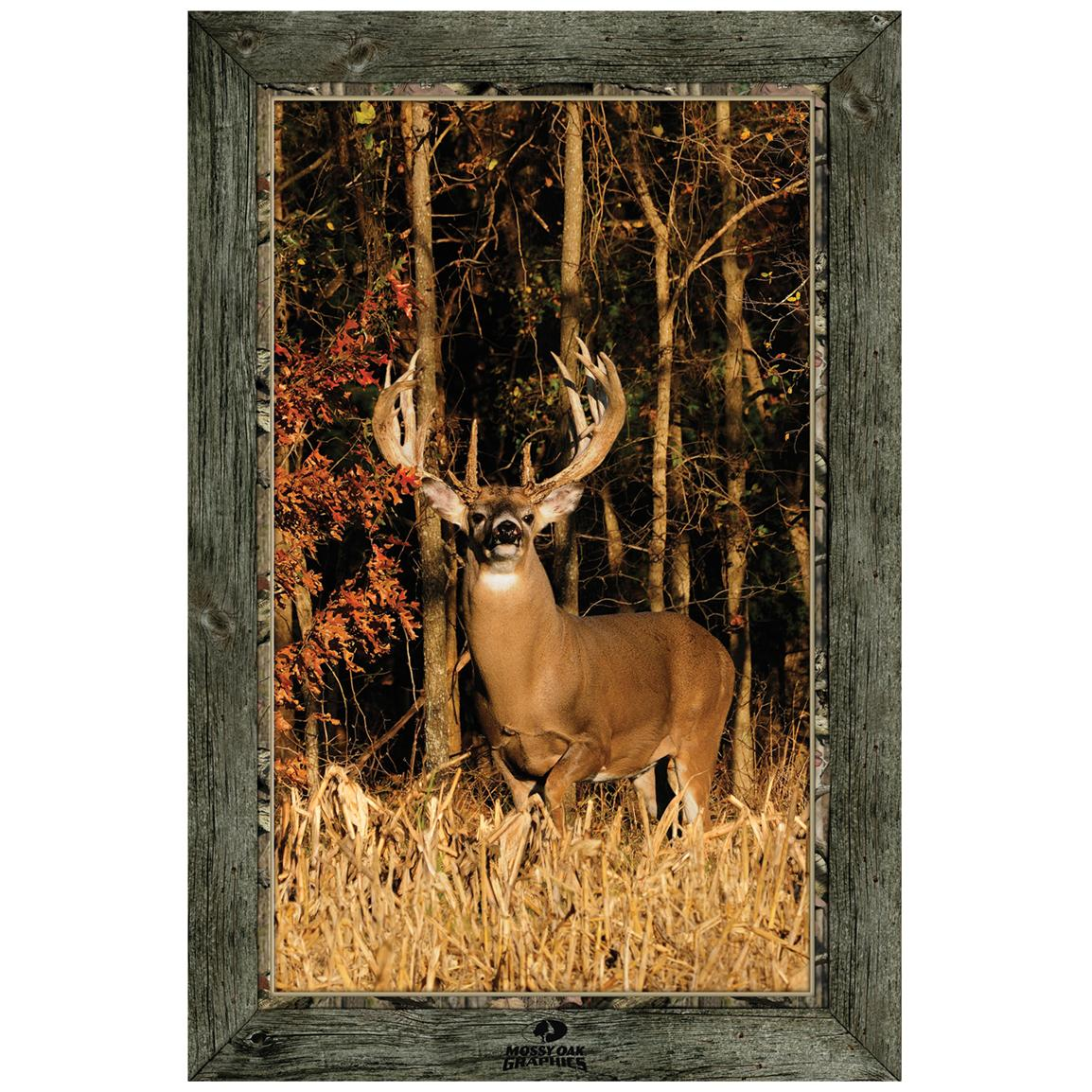 """Whitetail Buck in Cut Corn"" Framed Indoor Wall Graphic"