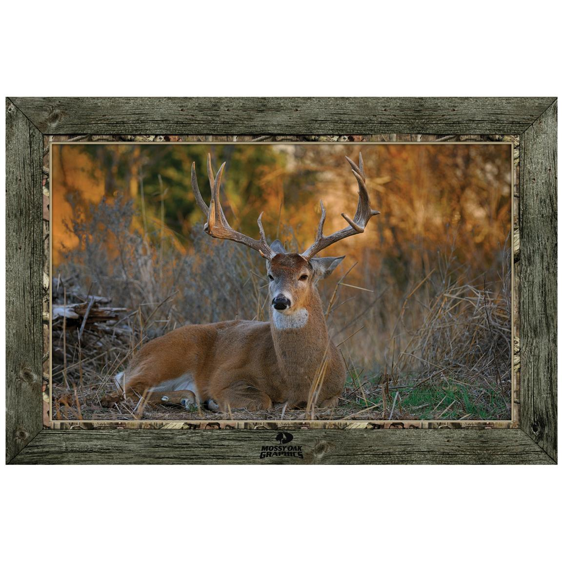 """Bedded Buck"" Framed Indoor Wall Graphic"