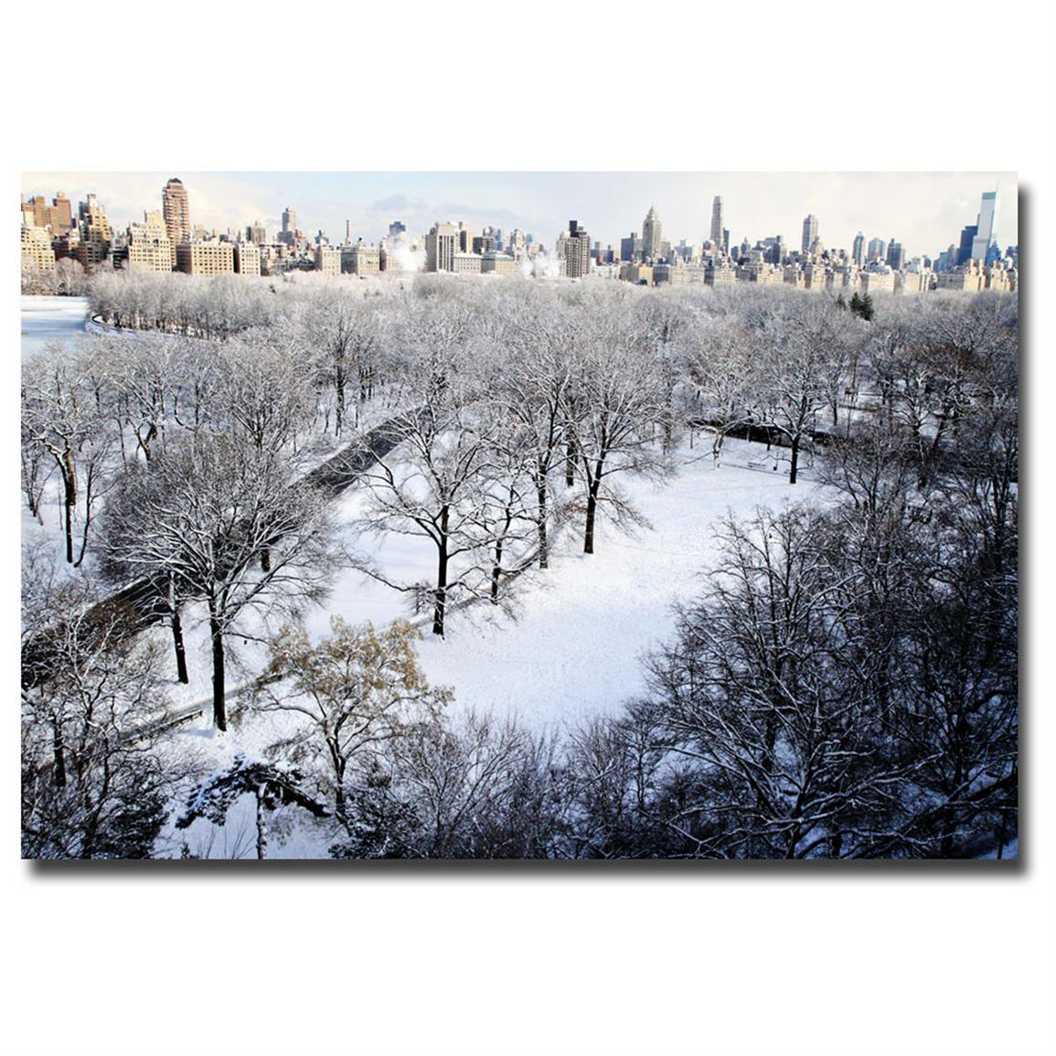 """Snow Covered Park"" Canvas Art by Ariane Moshayedi"
