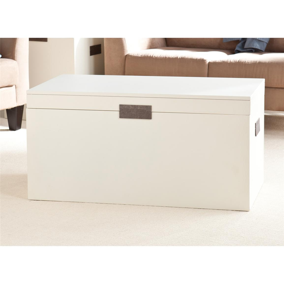 Holly & Martin™ Vicksburg Trunk Cocktail Table