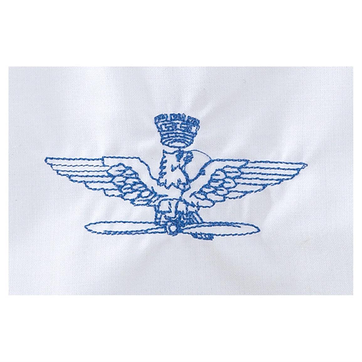 Flying high Italian Air Force insignia