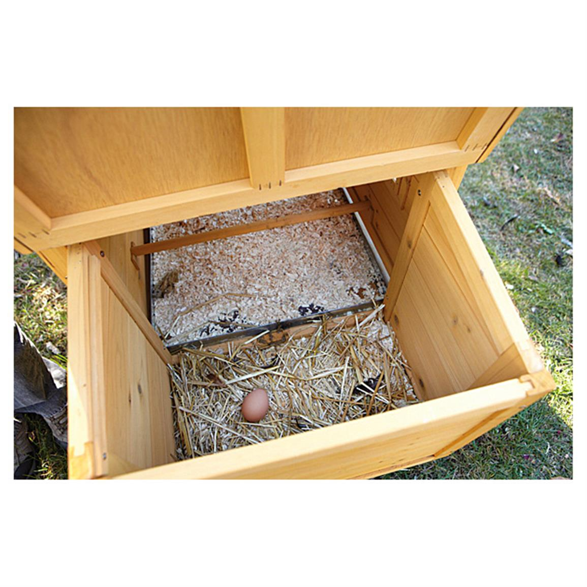 Hinged nesting box for easier egg collection