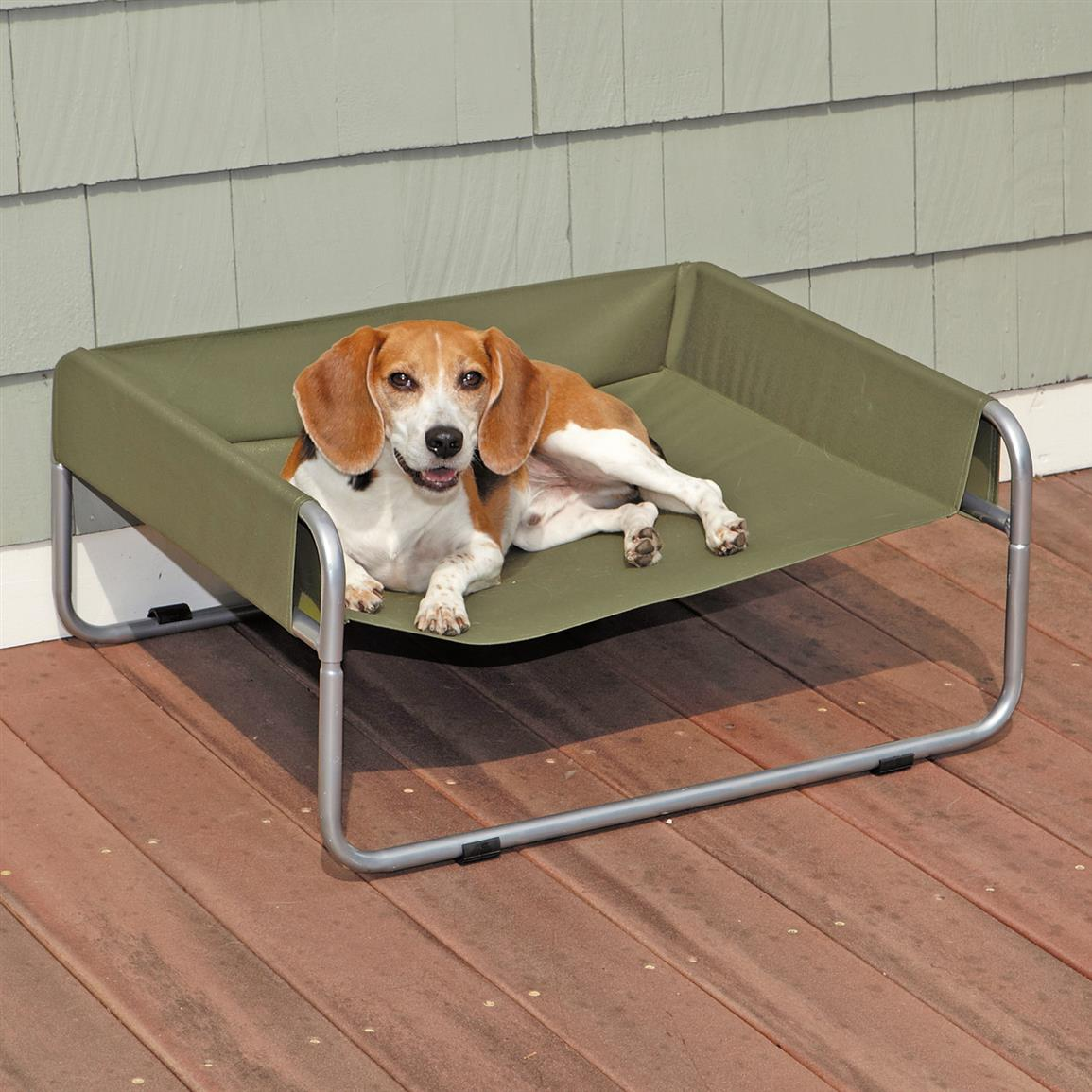 Guardian Gear Insect Shield Pet Cot, Green