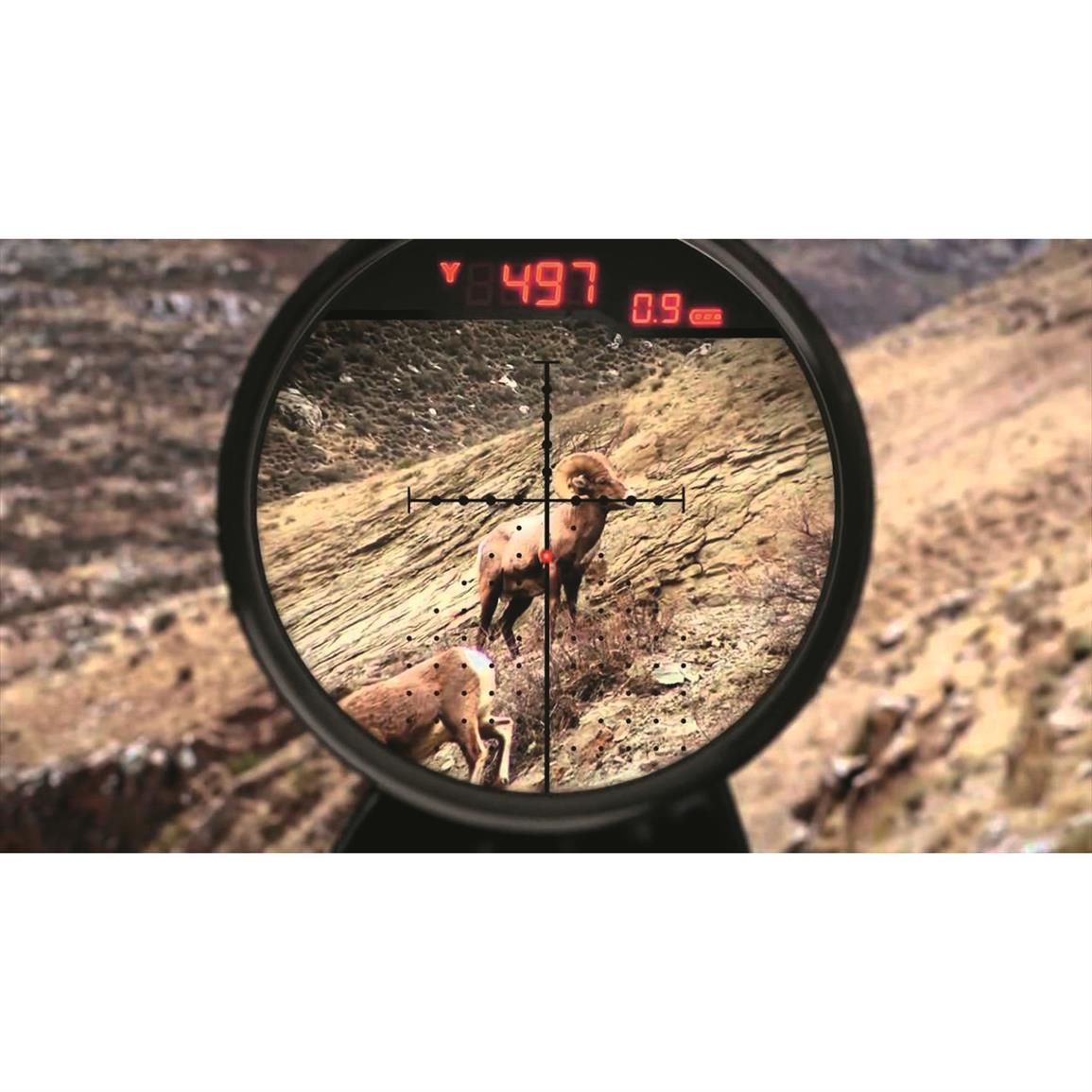 Sophisticated X96 Reticle