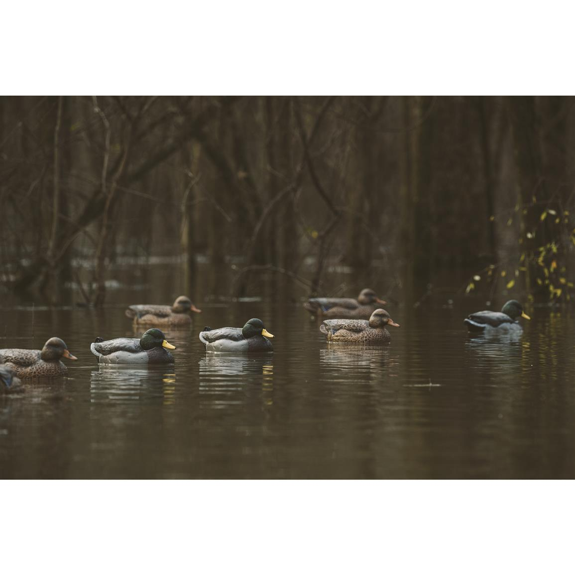Floating decoys move in water for realism