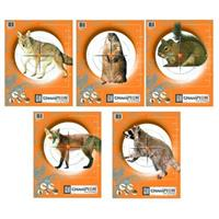 10-Pk. Champion Critter Series Targets Only