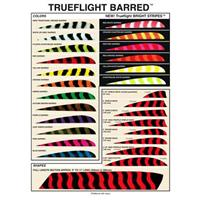 Trueflight Feathers® Barred Fletching Feathers