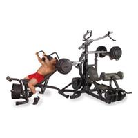 Body Solid Olympic Freeweight Leverage Gym Package