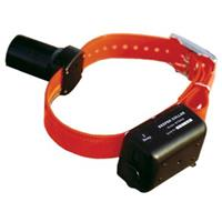 D.T. Systems® Baritone Beeper Collar