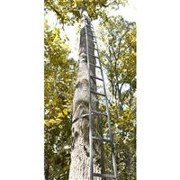 Guide Gear 20' Tree Ladder