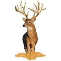 Whitetail Buck Indoor Wall Graphic, Front-facing