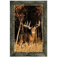 """Whitetail Buck Standing in Cornfield"" Framed Indoor Wall Graphic"