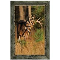 """Whitetail Buck Rubbing Pine Tree"" Framed Indoor Wall Graphic"