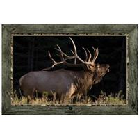 """Bugling Bull Elk in Field"" Framed Indoor Wall Graphic"