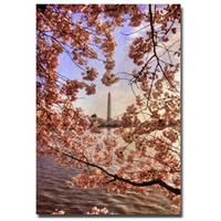 """Cherry Blossoms at the Washington Monument"" Canvas Art by Lois Bryan"