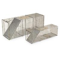 Guide Gear® Live Animal Traps, 2 Pack