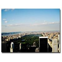 """NYC Skies"" Canvas Art by Ariane Moshayedi"