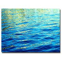 """Ripples"" Canvas Art by Ariane Moshayedi"