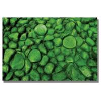 """Green River Rocks"" Canvas Wall Art by Kathie McCurdy"