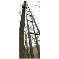 Guide Gear 18 foot Brush Ladder Tree Stand