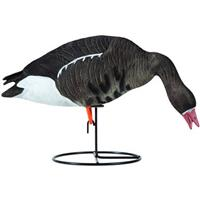 Tanglefree Pro Series 6-Pc. Specklebelly Full Body Goose Decoy Set