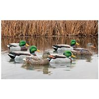 Avian-X Open Water Mallard Decoys, 6 Pack