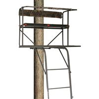 Big Dog Covert 2-Man Ladder Tree Stand