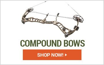 Shop Compound Bows