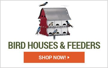 Shop Bird Houses & Feeders