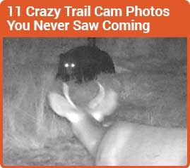Crazy Trail Cam Photos