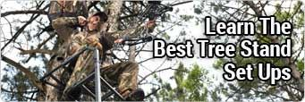 Best Tree Stand Set Ups